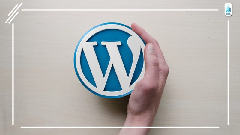 Create Your Own Website Using WordPress – Sora learning